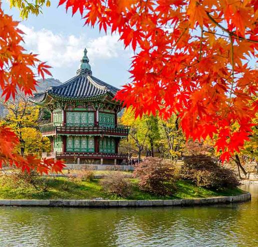 韓國Korea